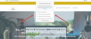 Ihre WordPress basierte Webseite fit für die Datenschutz-Grundverordnung